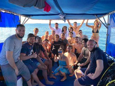 d-island trip 4