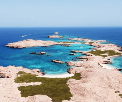 The Ultimate List of the best Dive Sites in Oman
