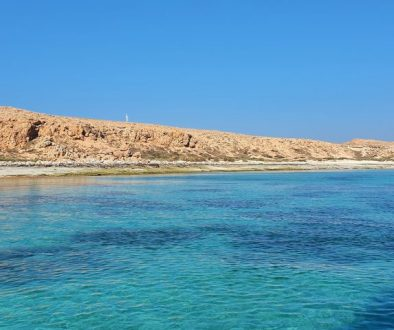 Your-Guide-to-Scuba-Diving-in-Oman